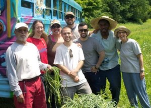 A few WESPAC members volunteered their time at the Wassaic Community Farm on Saturday, June 22nd, 2013