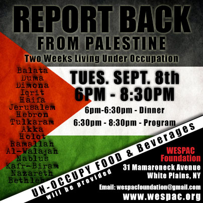 Report Back Palestine Flyer